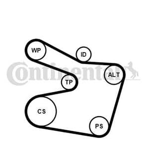 Conti Keilrippenriemensatz BMW 3er 5er 7er X5 Z3