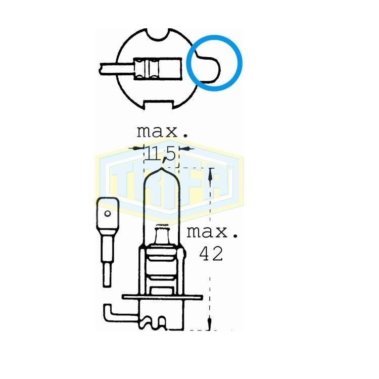 Auto-Lampe 8GJ002525201 01671 im Autoteile Preiswert Shop kaufen und sparen!
