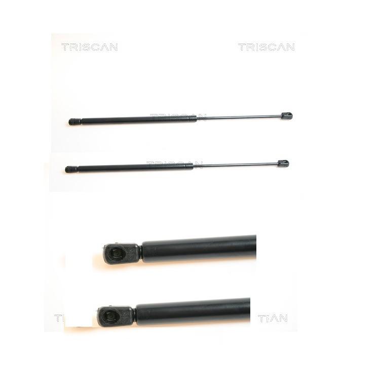 2 Triscan Gasfedern für Heckklappe 871042224 im Autoteile Preiswert Shop kaufen und sparen!